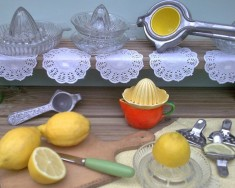 Juicers & lemon squeezers